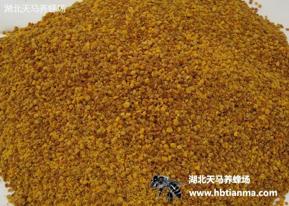 杂花粉-蜂群越冬好饲料-批发零售兼营-蜂场自产自销