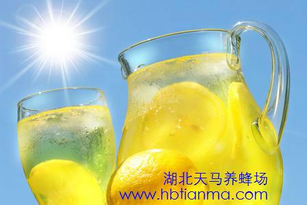 蜂蜜柚子茶的功效 美白养颜抵抗皮肤病(2)