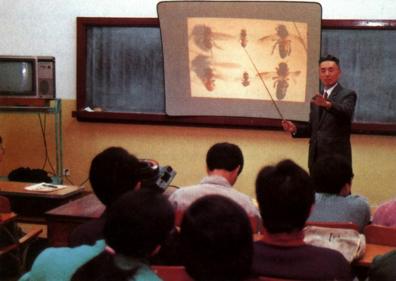 中国蜜蜂科学教育